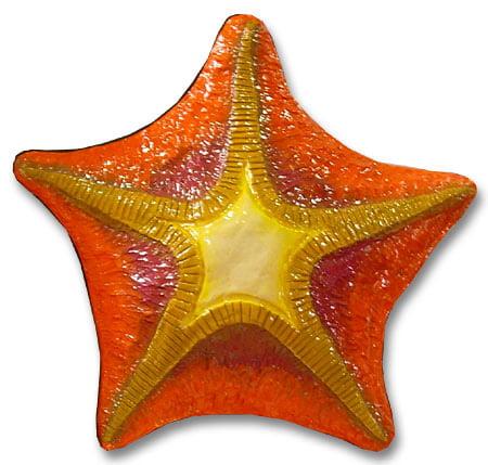 Estrela do Mar - de parede - 45 cm