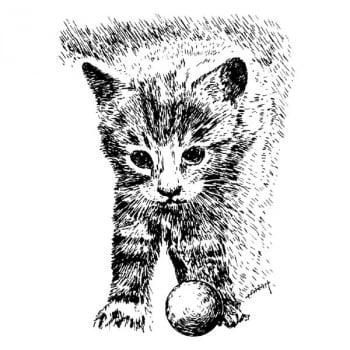 Desenho - Gatinho - Quadro decorativo