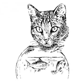 Desenho - Tentação - Quadro decorativo - Gato
